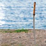 Artikkelikuva miekka sannassa